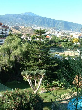 Teide Mar Apartments: The garden and the mountain