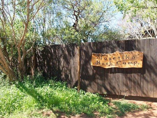 Mosetlha Bush Camp & Eco Lodge: Mosethla Bush Camp