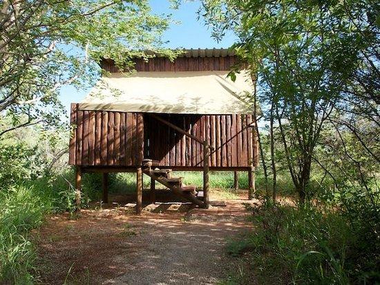 Mosetlha Bush Camp & Eco Lodge: Mosethla Bush Camp room