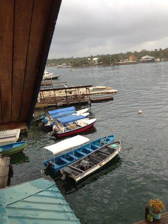 Hotel Bocas del Toro: vista dalla terrazza