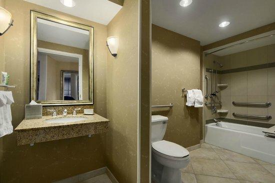 Hilton Chicago/Oak Lawn: Guestroom - Accessible Bathroom