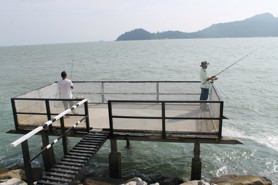 Coral Fishing Resort: Jetty in front of the cabin