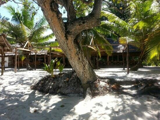 Anse Lazio: restaurant on the beach with tree shadow