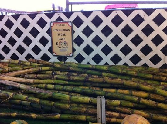 Robert is Here: Sugar cane