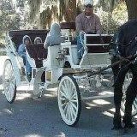 Blue Heron Inn: How about a carriage ride?