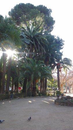 Parador de Tortosa: Tortosa Park