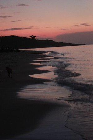 White Sand Resort: la spiaggia