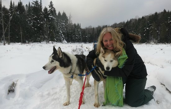 Winterdance Dogsled Tours: I could have hugged the dogs all day.