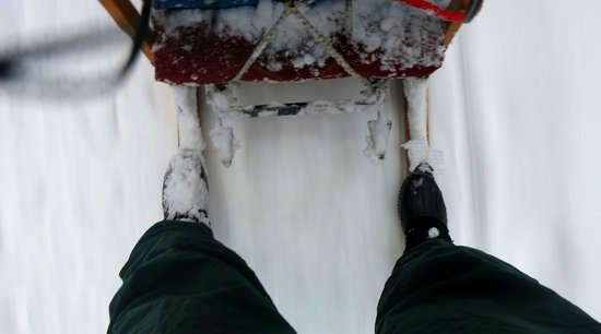 Winterdance Dogsled Tours: Driving.