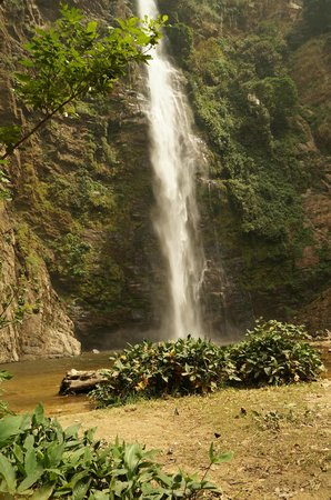 Hotels Near Wli Falls