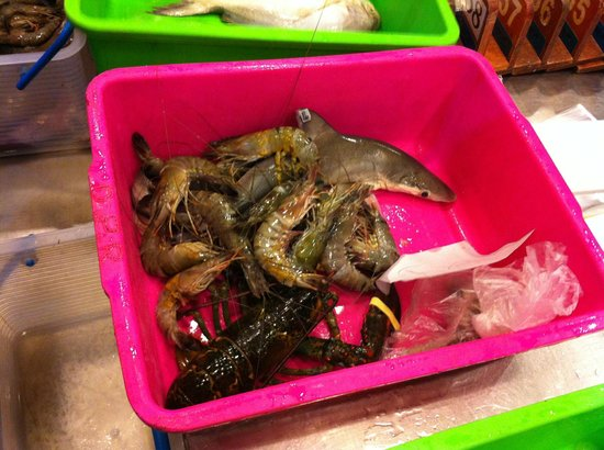 Picking fish in a bucket.