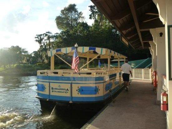 Disney's Saratoga Springs Resort & Spa照片