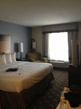 Comfort Inn & Suites I-10 Airport: nice king bed. surprise of the new decor