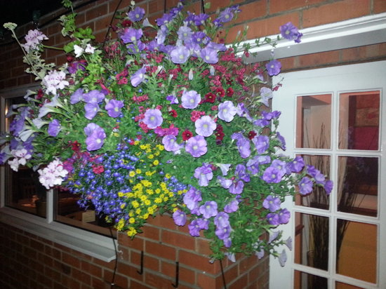 The Globe Inn: Award winning flower displays