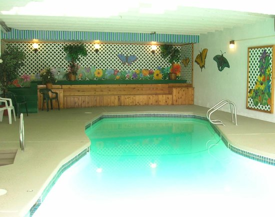 Mittersill Alpine Resort: Indoor Pool