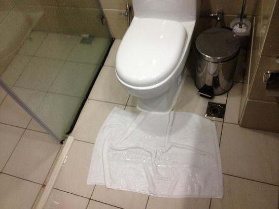 Harmony Hotel: bathroom flooding from shower