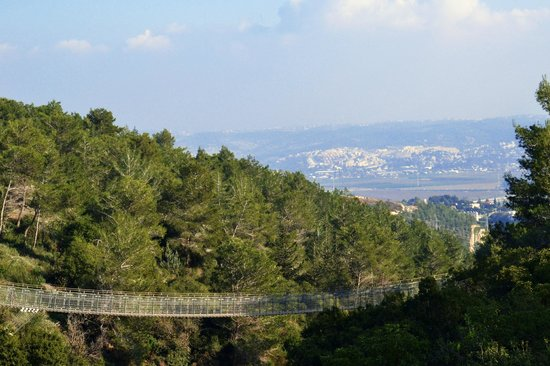 Hanging Bridge at Nesher Park: The great view from the bridge