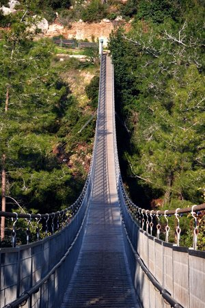Hanging Bridge at Nesher Park: Hanging bridge