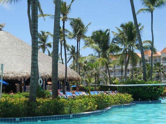 Barcelo Punta Cana: Alrededores de piscina