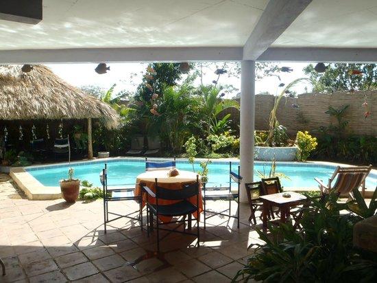 Bahona tropical: Agradable vista a la piscina, queda cerca el bar