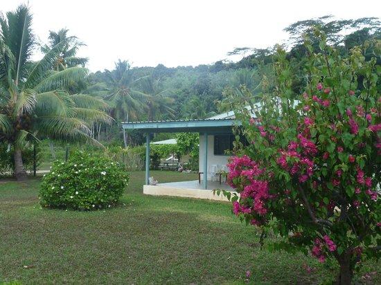 Amuri Guesthouse : le jardin et la véranda