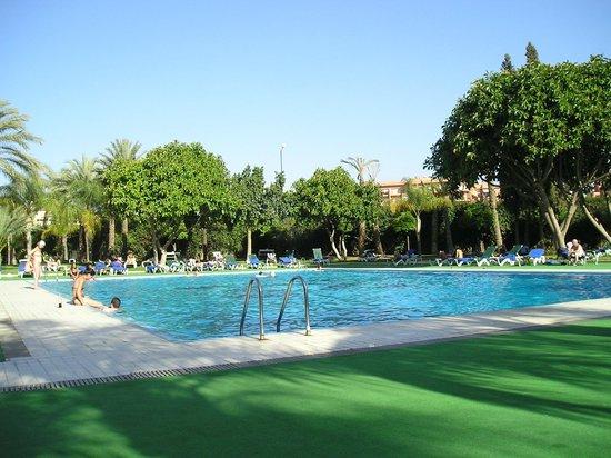 Hotel Atlas Asni : Poolside