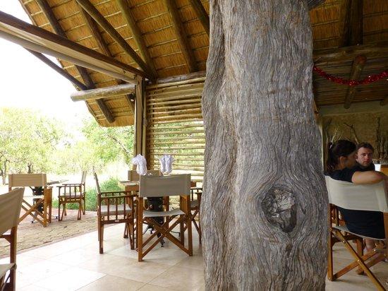 Kapama Southern Camp: Restaurante