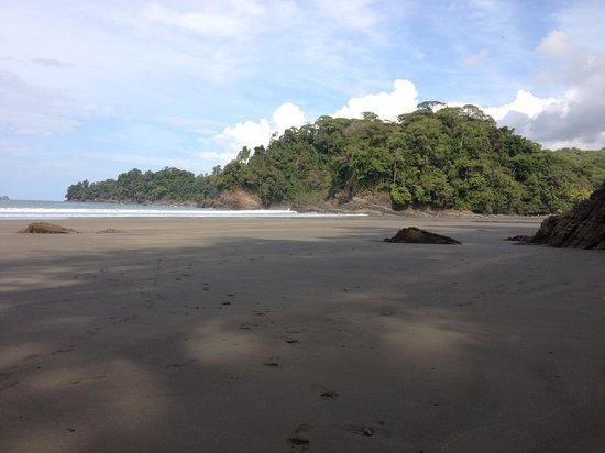 Villas Río Mar: Visiten el hotel y pueden ir a marino ballena, playa hermosa y tranquila, apenas para descansar