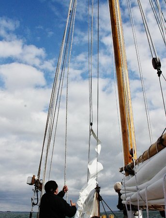 Maine Sailing Adventures: Here is were partisipaction take place. Helping raise the sails.