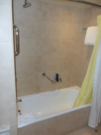 Crowne Plaza Santiago: banheiro