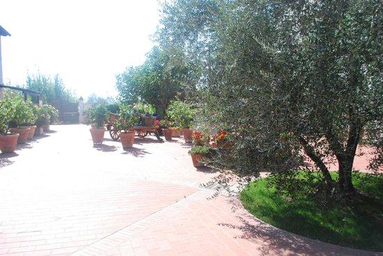 Locanda Le Boscarecce: garden