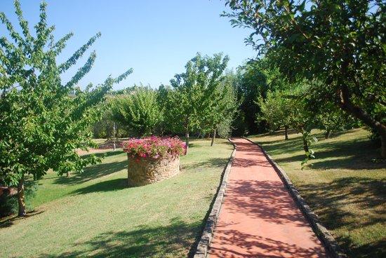 Locanda Le Boscarecce: garden walk