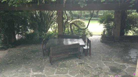 Fort Amity B&B: Garden