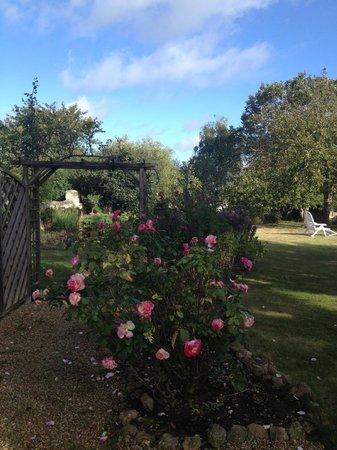Gite La Samsonelle : the garden