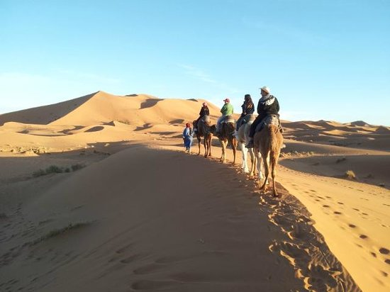 Kasbah Le: Excursion con camellos