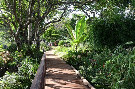 Gibb's Farm: Walkway to cottages