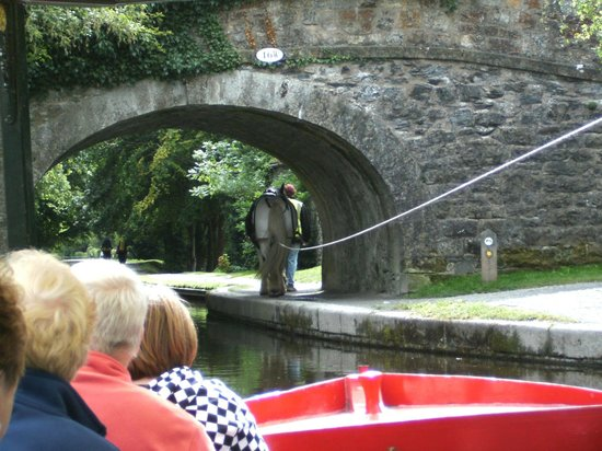 Llangollen Canal: Horse drawing the boat.