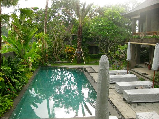 De Munut Balinese Resort: Pool