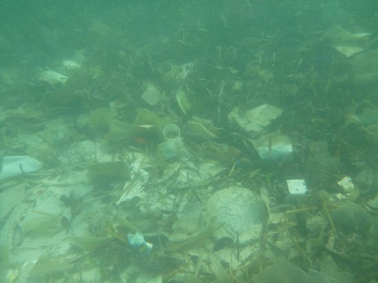 Fantasy Island Beach Resort:                                     Underwater dump near the beach