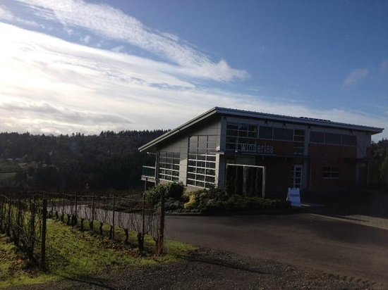 Winderlea Vineyard and Winery: Crisp Winter Day