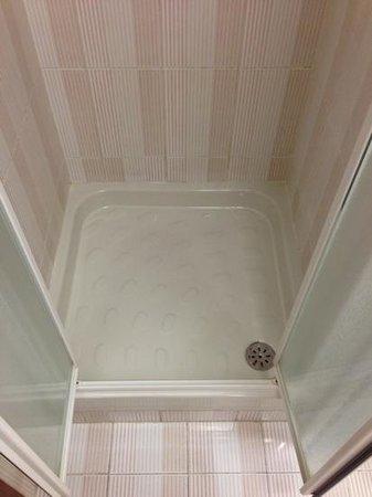 Hotel Pineta Palace: bath