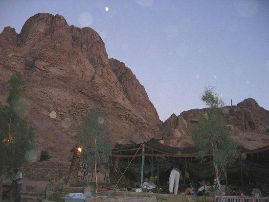 King Safari Dahab St. Catherine/Mt. Sinai Trip - Day Tours: Amazing views