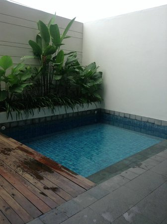 The Magani Hotel and Spa: Deluxe Pool suite - pool in our back area.