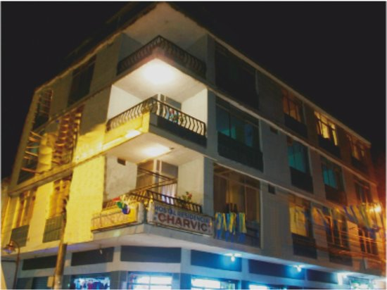 CharVic Hostel : La foto del Hostel