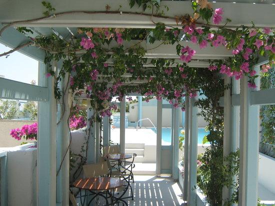 Villa Anneta bar side