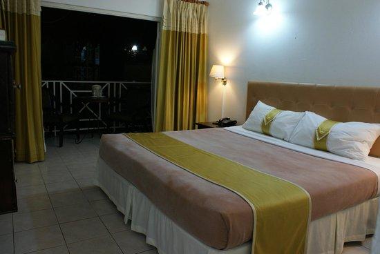 Altamont Court Hotel Kingston: King