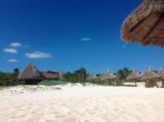 Amarte Hotel: Beach club