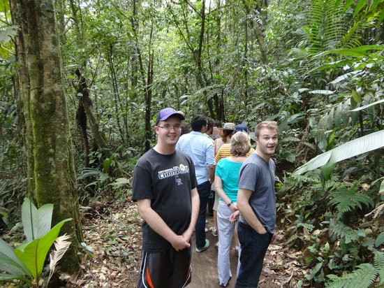 Rainforest Adventures: Short hike