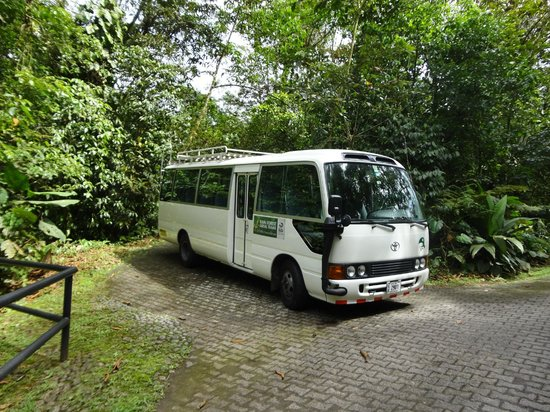 Rainforest Adventures: The tour bus