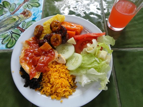 Rainforest Adventures: Great lunch